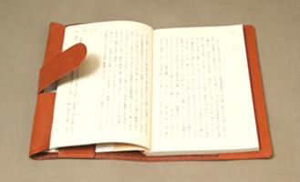 bookcoverBAbr3