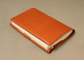 bookcoverBAbr4