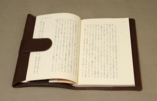 bookcoverBAcho3