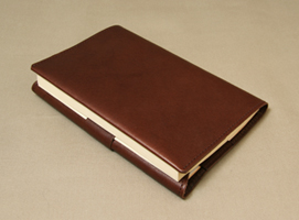 bookcoverBAcho4