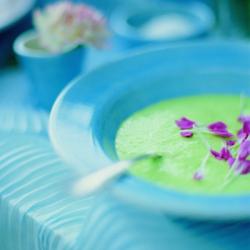 soup_tur2